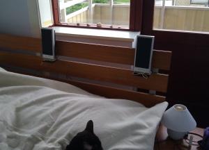 Anjas seng med højttalere på hovedgærdet