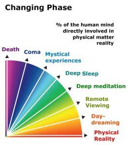Faseskift i den menneskelige bevidsthed